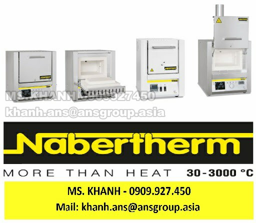 thiet-bi-lt-9-13-power-rating-nabertherm-vietnam.png